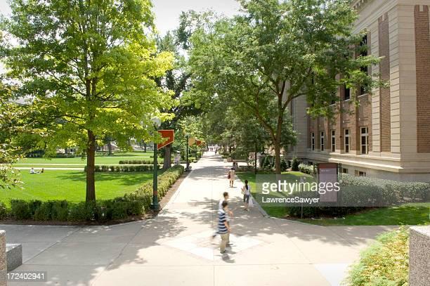 Universität von Minnesota, Minneapolis