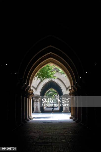 campus of the university of tokyo - university of tokyo stock pictures, royalty-free photos & images