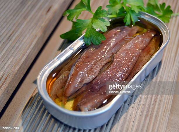 Can of anchovies on wooden background