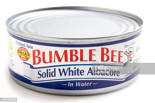 """can of solid white albacore in water """"bumble bee"""" brand - bumblebee stock pictures, royalty-free photos & images"""