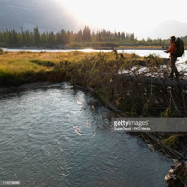 Canada, Alberta, Banff National Park, Bow River, Hiker walking across logs