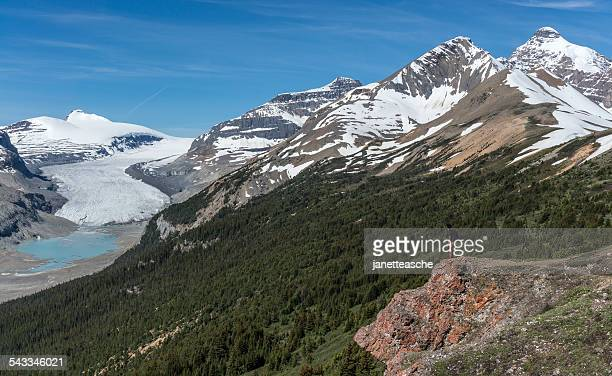 canada, alberta, banff national park, saskatchewan glacier and valley, canadian rockies, hiker looking at view from mountain - columbia icefield stock pictures, royalty-free photos & images