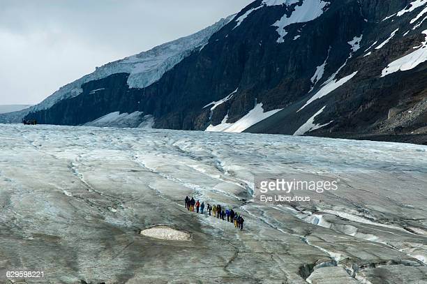 Canada Alberta Columbia Icefield Group of tourists walking up the Athabasca Glacier