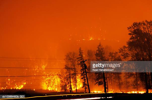 Canada, British Columbia, Forest fire at night