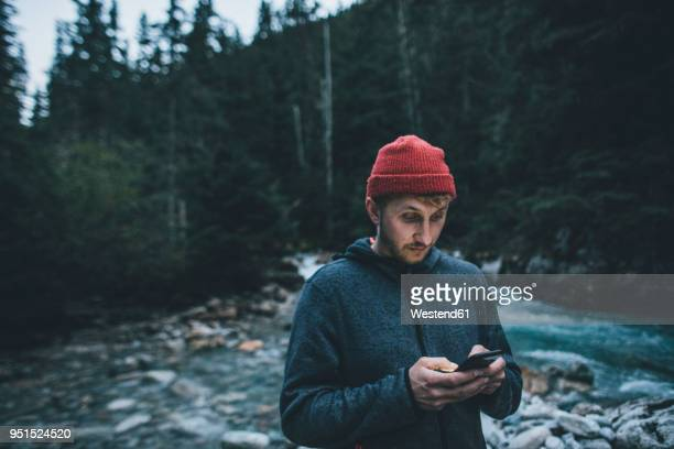Canada, British Columbia, Glacier National Park, man with cell phone at Illecillewaet River in forest