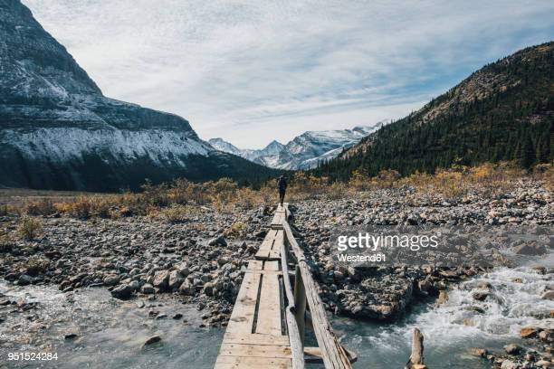 canada, british columbia, mount robson provincial park, man hiking on berg lake trail - 横断する ストックフォトと画像