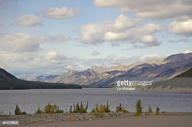 canada, british columbia, muncho lake - liz vega fotografías e imágenes de stock