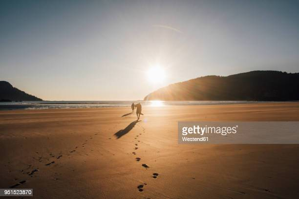 canada, british columbia, vancouver island, two men walking on beach at san josef bay at sunset - vancouver island stockfoto's en -beelden