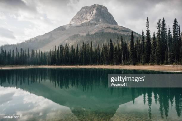 canada, british columbia, yoho lake, yoho national park, wapta mountain, rocky mountains - britisch kolumbien stock-fotos und bilder