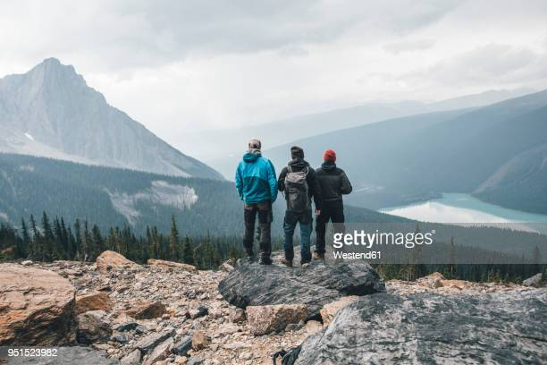 canada, british columbia, yoho national park, hikers at mount burgess looking at emerald lake - small group of people stock pictures, royalty-free photos & images