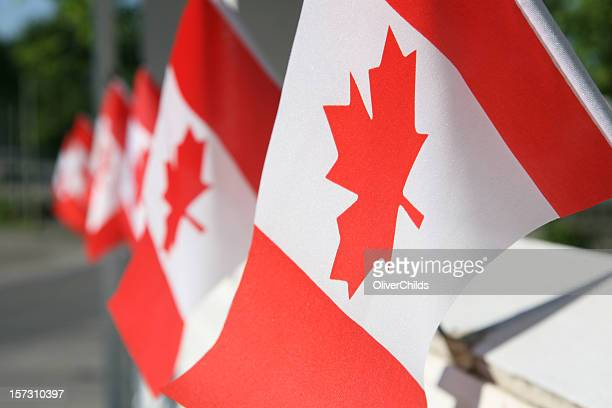 Canada day flags