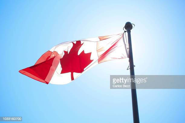 canada flag blue sky - canadians celebrate national day of independence stock pictures, royalty-free photos & images