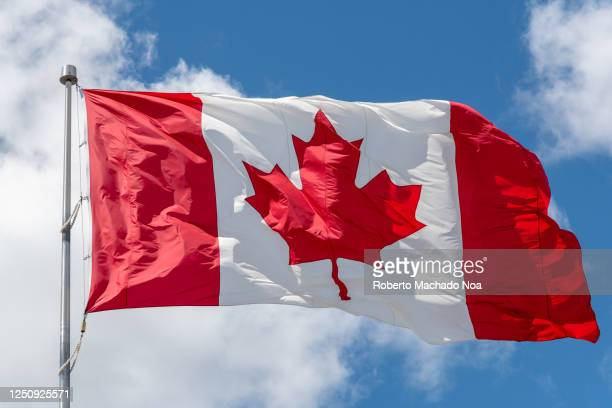 canada flag waving on a blue sky - canadian flag stock pictures, royalty-free photos & images