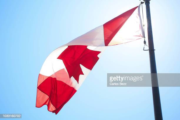 canada flag waving - canadians celebrate national day of independence stock pictures, royalty-free photos & images