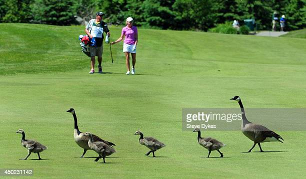 Canada Geese cross in front of Stacy Lewis as she and her caddie walk down the fifth hole during the third round of the Manulife Financial LPGA...
