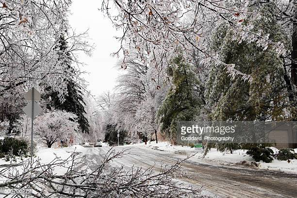 Canada: Icy Street in Toronto (Ice Storm 2013)