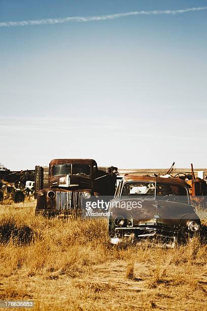 canada, junk yard with old us cars - abandoned car stock photos and pictures