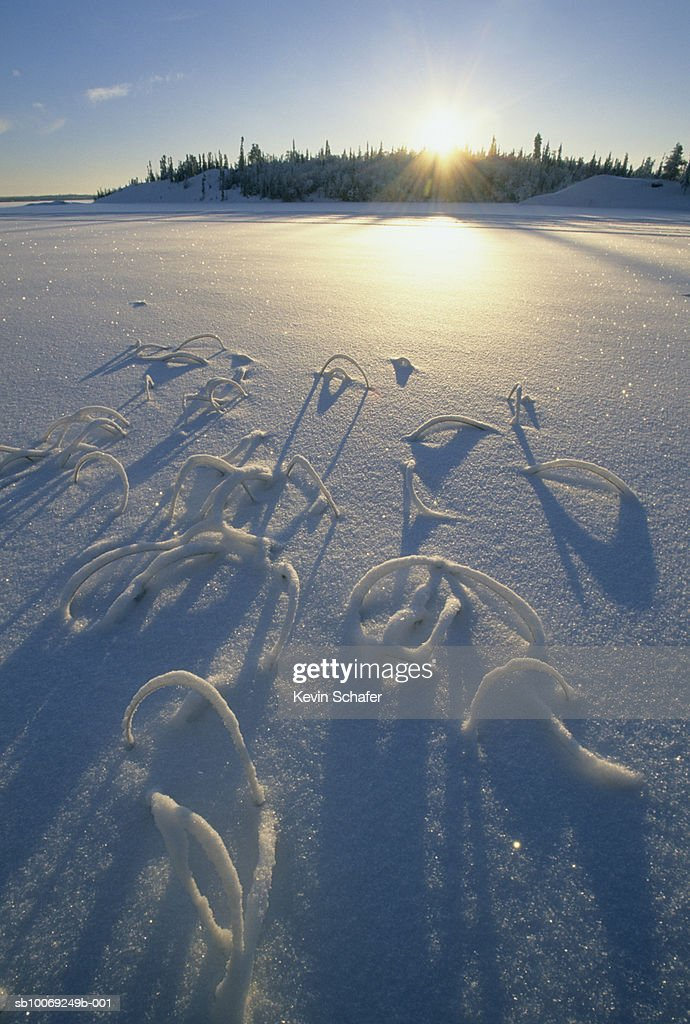 Canada, Northwest Territories, Great Slave Lake, Frozen lake at sunset : Stockfoto