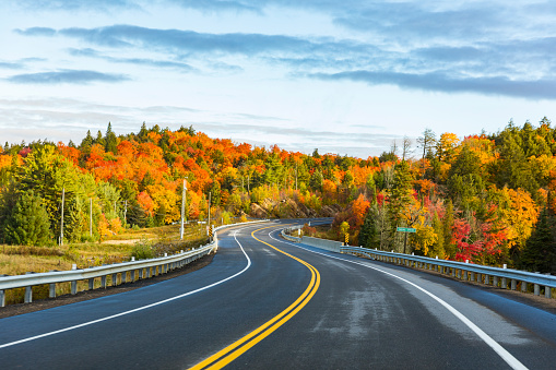 Canada, Ontario, main road through colorful trees in the Algonquin park area - gettyimageskorea