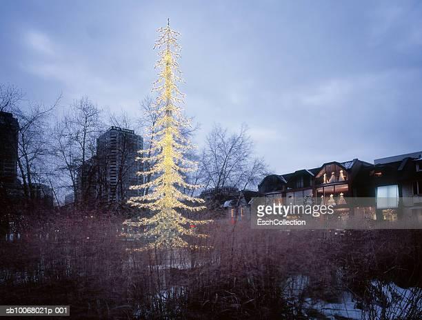 Canada, Ontario, Toronto, Yorkville, Christmas tree with shopping street