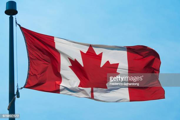 o canada! - canadian flag stock pictures, royalty-free photos & images
