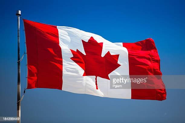 Image result for canada flag photos
