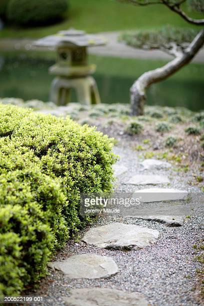 canada, vancouver, japanese style garden, stone footpath path - jeremy chan stock pictures, royalty-free photos & images