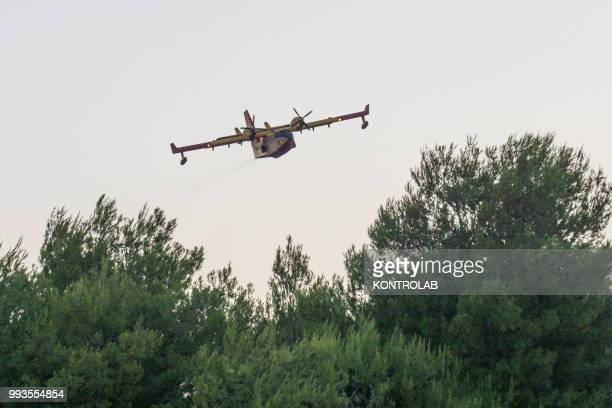 POLLINO VILLAPIANA CALABRIA ITALY A canadair during a huge fire that destroyed a vast area of woods pine forests and Mediterranean vegetation at the...