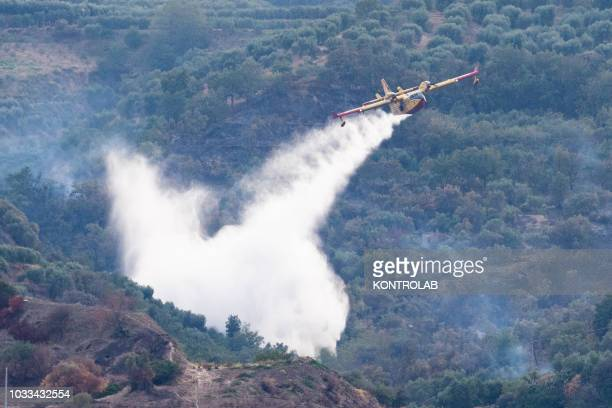 Canadair fire fighting plane in action while extinguishing a fire in the hills of Corigliano Calabro.