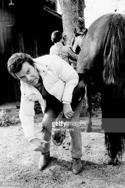 Canadian actor William Shatner cleans a horse's hoof at his ranch Three Rivers California 1982