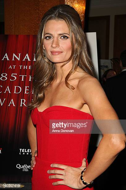 Canadian actress Stana Katic attends the Los Angeles luncheon with Consulate General of Canada to celebrate Canadian Oscar nominees at Regent Beverly...