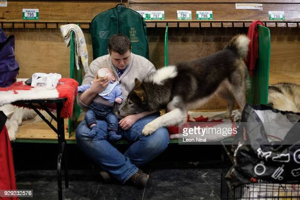 Canadian Eskimo Dog looks on as it's owner feeds a baby at the Crufts dog show at the NEC Arena on March 8, 2018 in Birmingham, England. The annual...