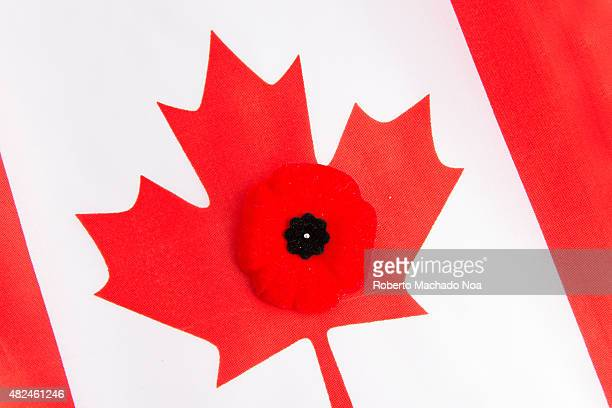 Canadian flag and a red poppy The red poppy is the Canadian sign of remembering our veterans Worn on the left side close to the heart the poppy has...