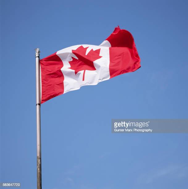 canadian flag - image stock pictures, royalty-free photos & images