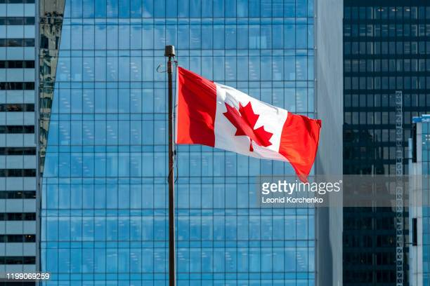 canadian flag waving on the wind - canadian flag stock pictures, royalty-free photos & images
