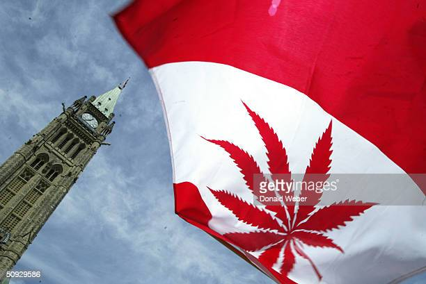 Canadian flag with a marijuana leaf flies during a rally in support of legalizing marijuana on June 5 2004 alongside Parliament Hill In Ottawa Canada...
