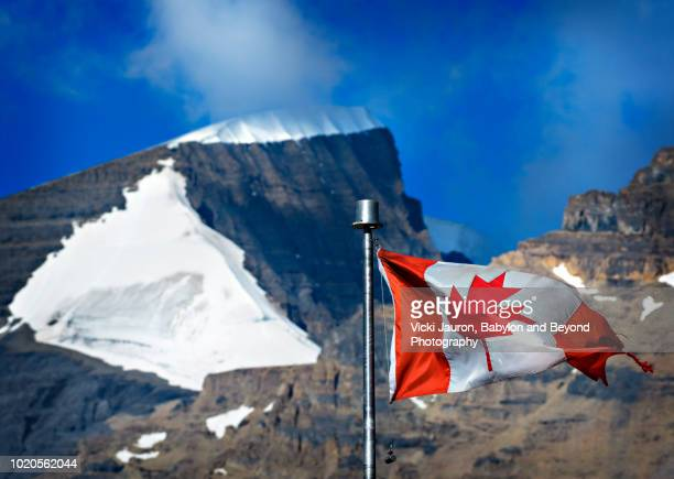 canadian flag with glacier snow in background at columbia glacier - columbia icefield stock pictures, royalty-free photos & images