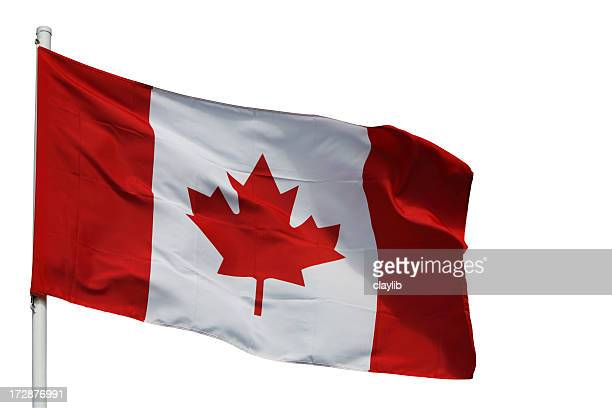 canadian flag with path - canadian flag stock pictures, royalty-free photos & images