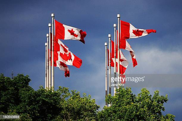 canadian flags blowing - ottawa stock pictures, royalty-free photos & images