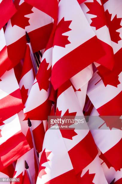 canadian flags - canadian flag stock pictures, royalty-free photos & images
