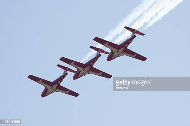 canadian forces snowbirds in flight - canadian snowbird stock pictures, royalty-free photos & images
