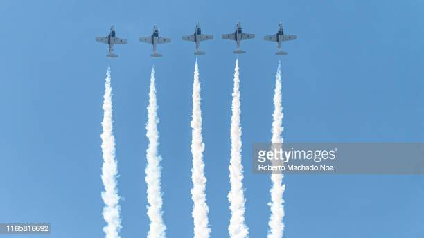 Canadian Forces Snowbirds perform during the 70 Anniversary of the Canada International Air Show