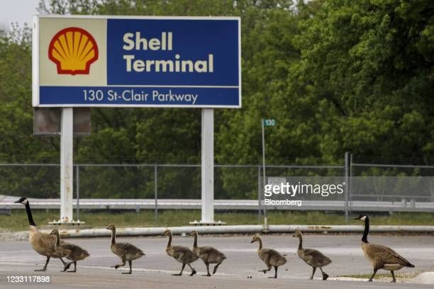 Canadian Geese walk by signage for a Royal Dutch Shell Plc refinery near the Enbridge Line 5 pipeline in Sarnia, Ontario, Canada, on Tuesday, May 25,...