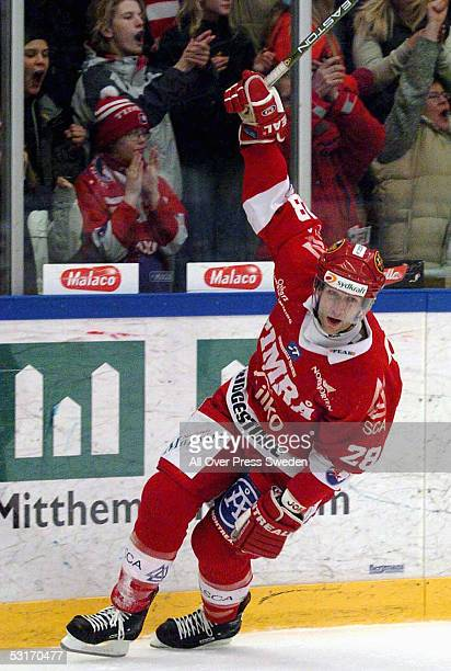 Canadian ice hockey player Kent Manderville of Timra celebrates during a game in the Swedish Elitserien hockey league during the 20042005 NHL lockout...