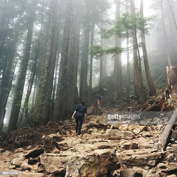 canadian landscapes - grouse mountain stock photos and pictures