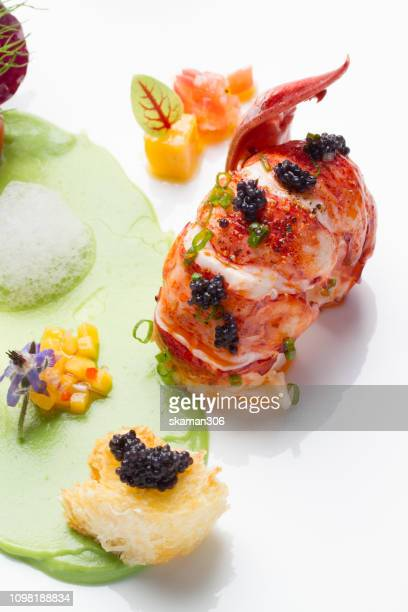 canadian lobster cooking fine dining french style - lobster fishing stock photos and pictures