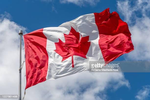 Canadian National flag waving on a clear sunny day.