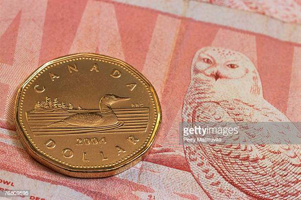 canadian one dollar coin on a bank note - canadian dollars stock pictures, royalty-free photos & images
