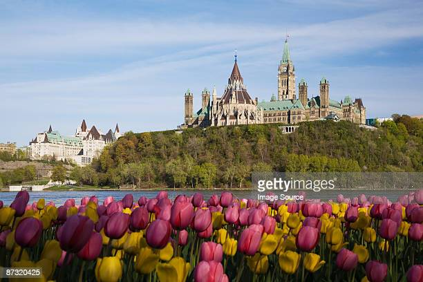 Canadian parlimentary buildings on parliament hill