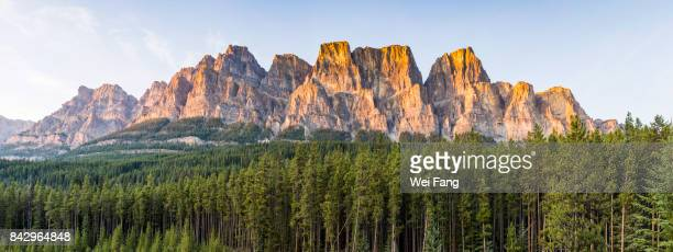 canadian rockies: castle mountain - castle mountain stock photos and pictures
